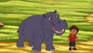 Diego reaproxima o hipopótamo e o pica-boi , 1 h e 40 min