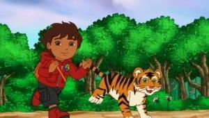 O tigre bengala faz um desejo, 1 h e 40 min